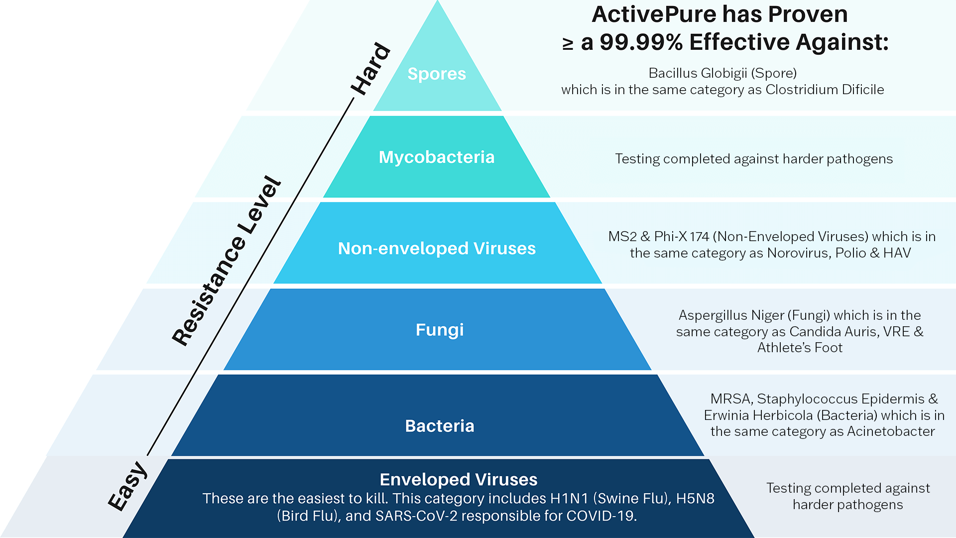 Hierarchy-of-Pathogens
